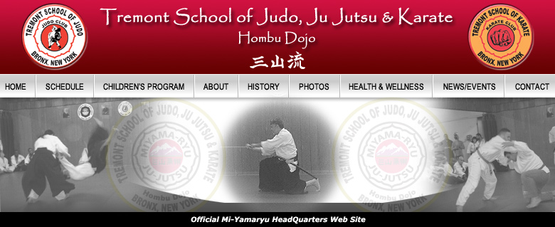 Bronx New York NY Martial Arts Karate Judo Ju Jutsu Jujitsu JuJutsu Taekwon do